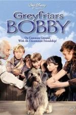 Greyfriars Bobby