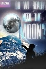 Do We Really Need the Moon